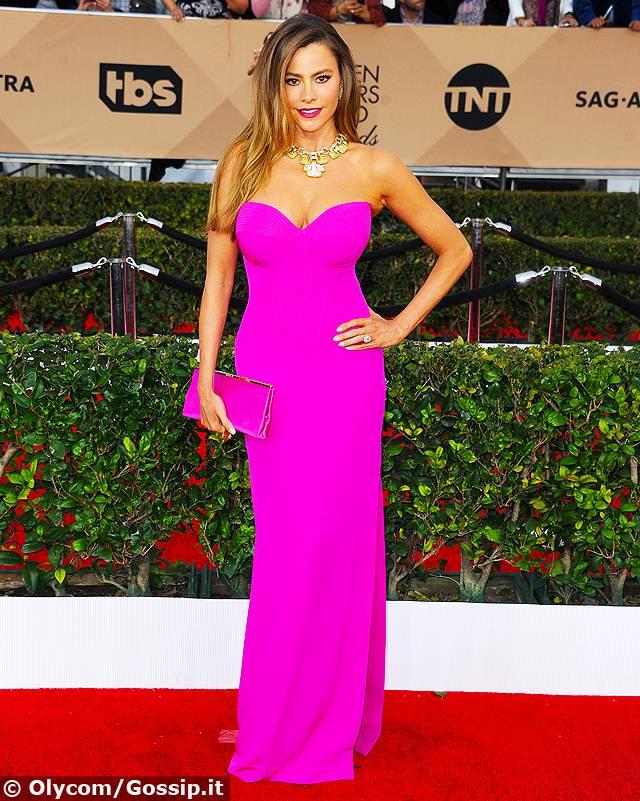L attrice Sofia Vergara ha fatto il pieno di flash a Beverly Hills sul red  carpet dei SAG Awards 2016 623c92715a4