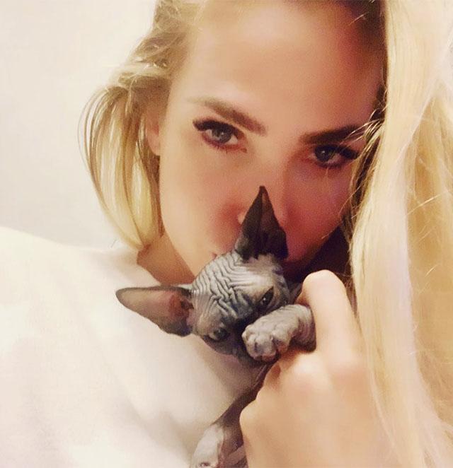Ilary Blasi, new entry in famiglia, si è presa il gatto nudo, uno Sphynx, che si chiama...