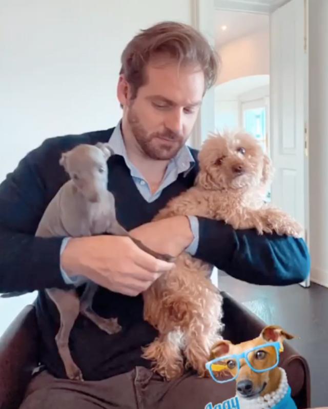 Michellle Hunziker, in casa Trussardi arriva nuovo cane, un levriero: Odino