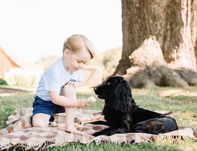 Sembra che il Principino George, 7 anni, fosse molto legato al cane