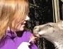 Geri Halliwell gioca con un piccolo canguro allo zoo