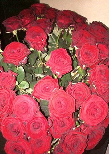 Un mazzo di bellissime rose rosse per melissa satta da un for Foto di rose bellissime