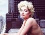 Due dive a confronto: Marilyn Monroe e Michelle Williams